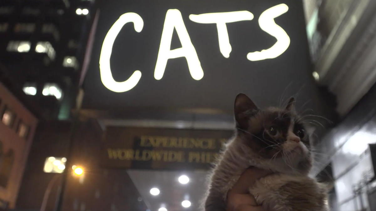 "Grumpy Cat outside the marquee for ""Cats"""