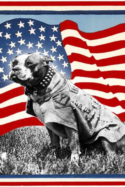 Sgt. Stubby: The Great American War Dog Musical