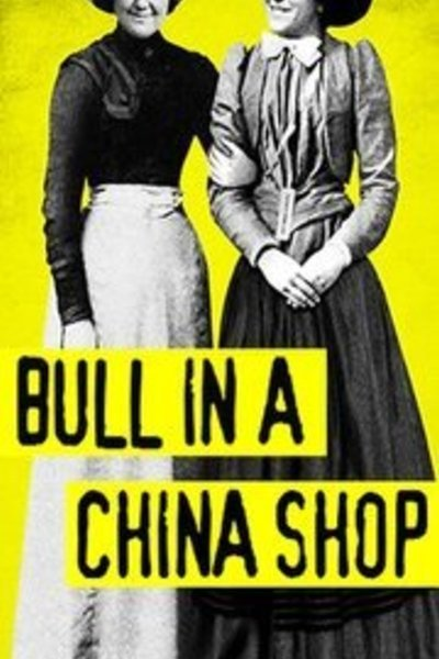 Bull in a China Shop