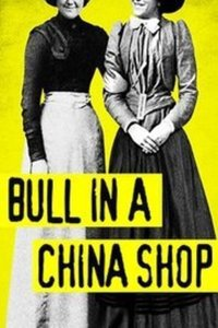 Preview rsz bull in a china shop