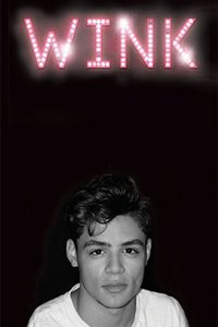 Preview wink logo