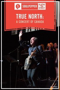 Preview true north