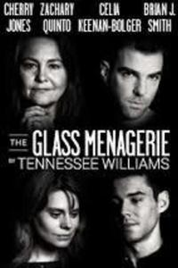 Preview the glass menagerie 2014