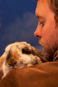 Preview velveteenrabbit