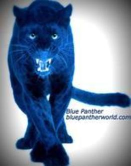 Blue Panther Productions Logo