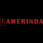 AMERINDA Inc.: Producer in Mangled Beams