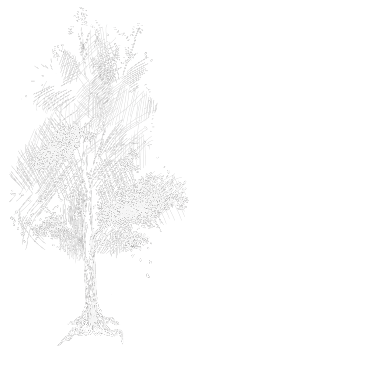 Improbable Stage: Producer in That Which Remains